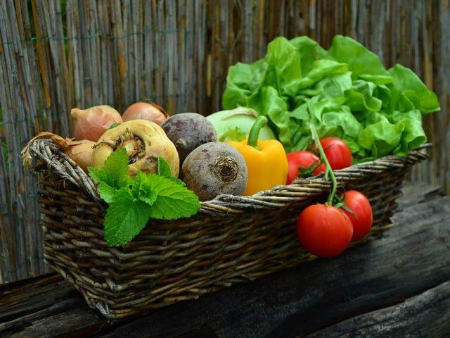 Recetas y platos para quienes tienen poco tiempo